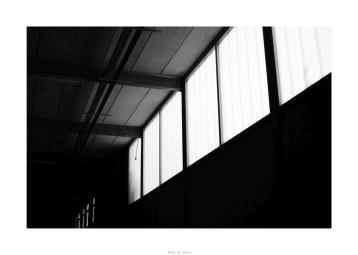 Nikon D90_28999__DSC0271-border